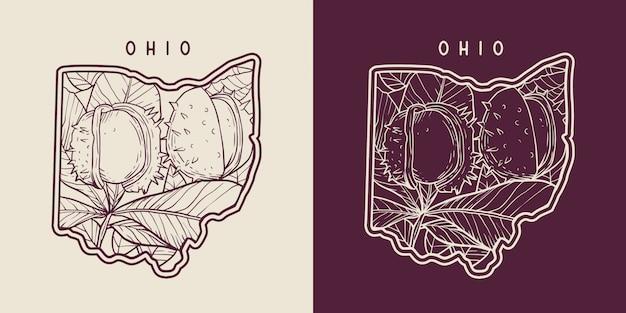Mapa de ohio con monoline de fruta de castaño de indias