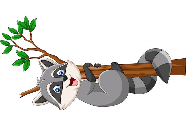Mapache de dibujos animados en la rama de un árbol