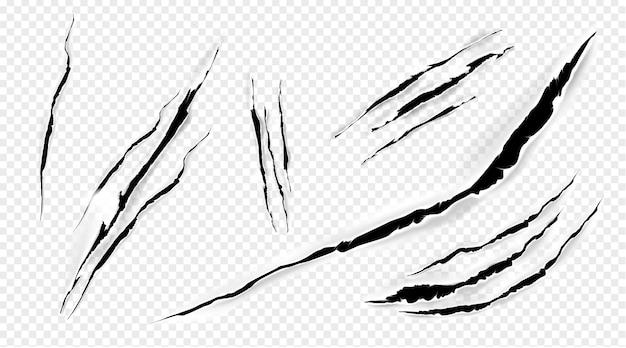 Marcas de gato, garras, arañazos, mascotas vectoriales aisladas o uñas de animales salvajes, fragmentos de patas de tigre o oso. rotura de león, monstruo o bestia, conjunto de trazos 3d realistas