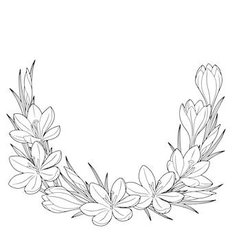 Marco con azafranes de flores de primavera en blanco y negro