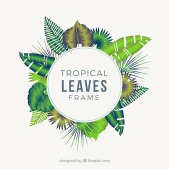 Marco circular de hojas tropicales realistas