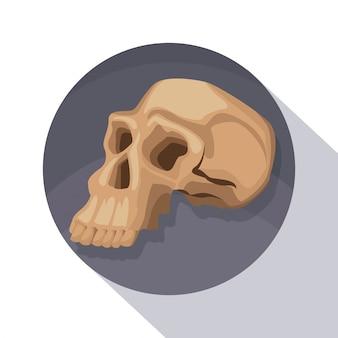 Marco circular sombreado de cráneo humano de primer plano de póster
