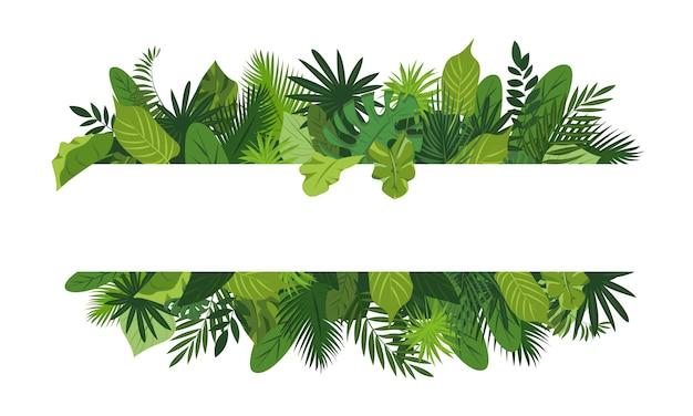 Marco de concepto de hojas tropicales, estilo de dibujos animados