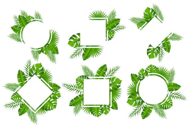 Marco de concepto de hojas tropicales