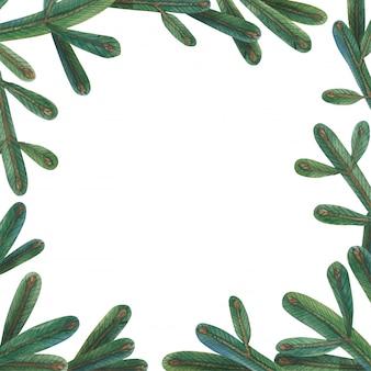 Marco cuadrado de rama de árbol de navidad