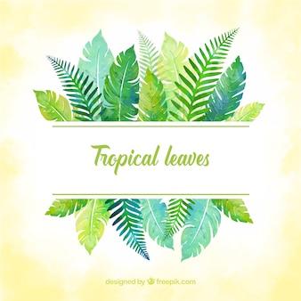 Marco de hojas tropicales con estilo de acuarela