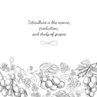 Marco decorativo adorno de desplazamiento vertical uva borde foliado ilustración de boceto dibujado a mano