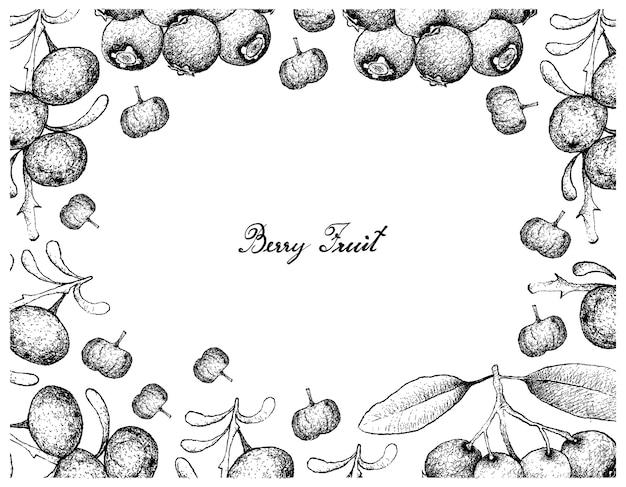 Marco dibujado a mano de azul lilly pilly y negro goji