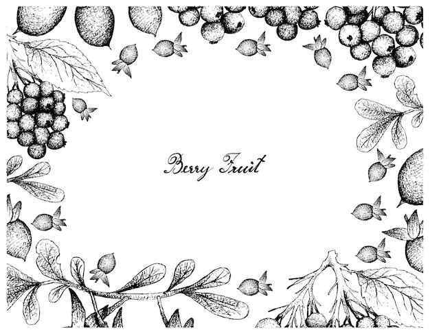 Marco dibujado a mano de diospyros lycioides y frutos de saúco