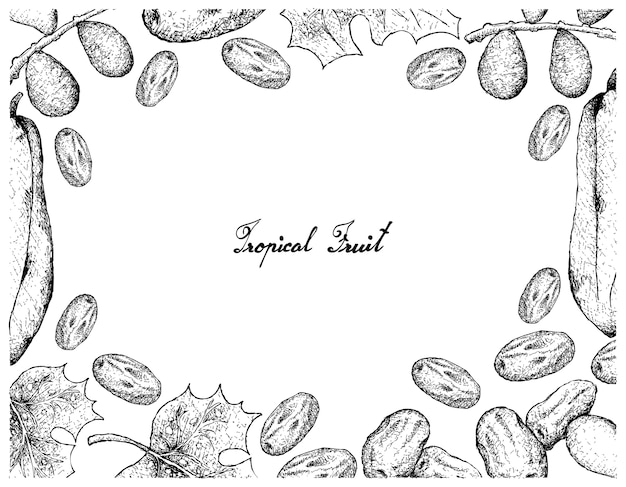 Marco dibujado a mano de fechas y frutas de la papaya de babaco