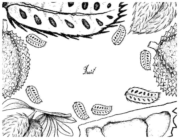 Marco dibujado a mano de frutas guanábana y durian