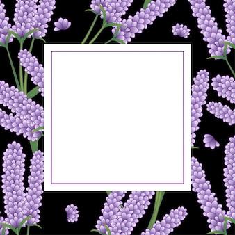 Marco de flor de lavanda sobre fondo negro