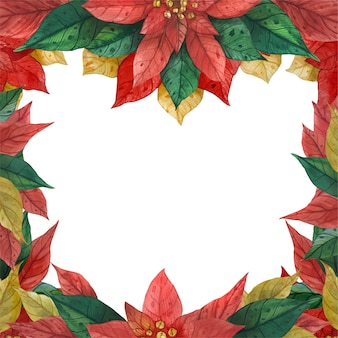 Marco de flor de pascua verde rojo