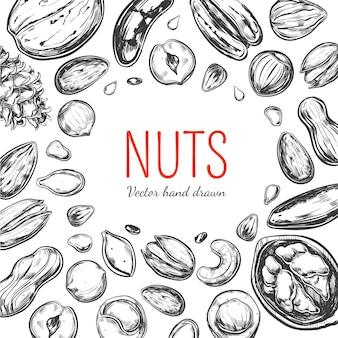 Marco de frutos secos y semillas. objetos dibujados a mano