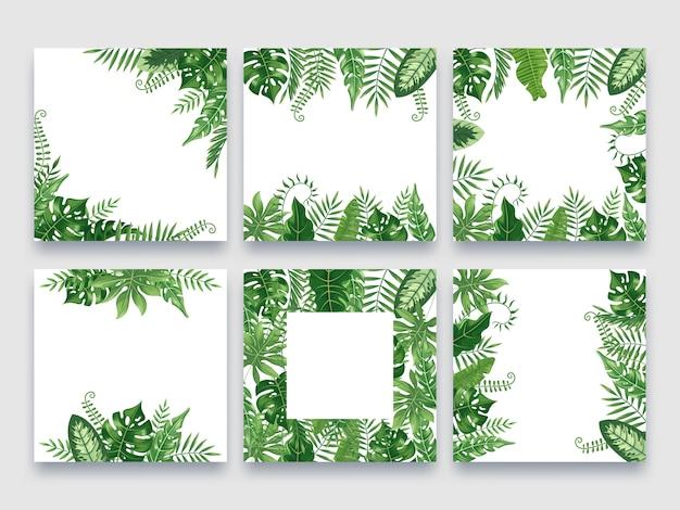 Marco de hojas exóticas. conjunto de bordes de hojas tropicales, marcos de verano de naturaleza y hojas de palma de lujo