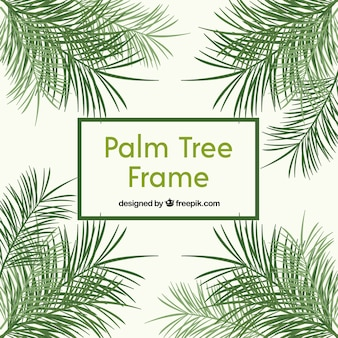 Marco de hojas de palmeras