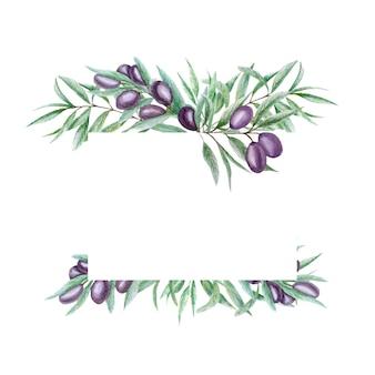 Marco de hojas de rama de olivo negro acuarela.