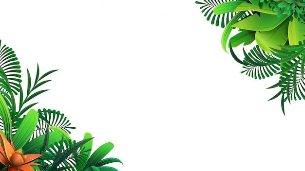 Un marco de hojas tropicales alrededor de un espacio vacío blanco. elegante telón de fondo decorado con follaje de plantas exóticas de la selva.