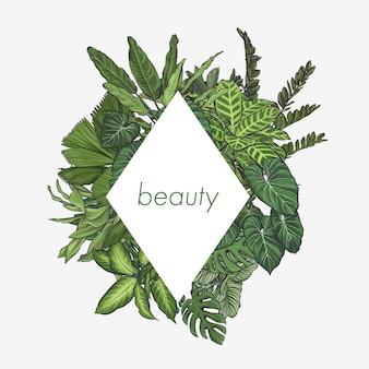 Marco de hojas tropicales exóticas