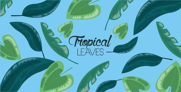 Marco de hojas tropicales