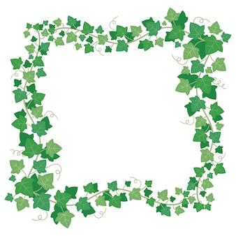 Marco de hojas verdes de hiedra.