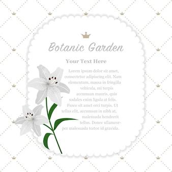 Marco de jardín botánico lirio de tigre blanco
