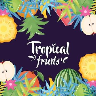 Marco de palmeras y frutas tropicales.