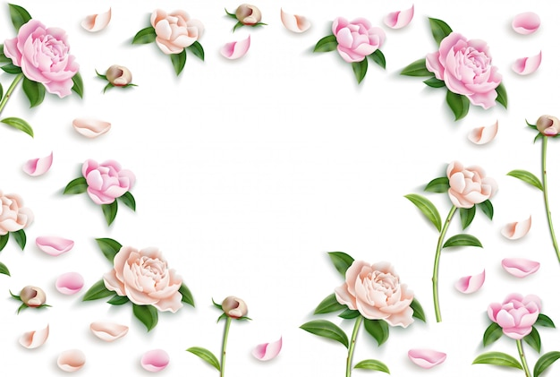 Marco de patrón de vector peonía flor hoja brotes