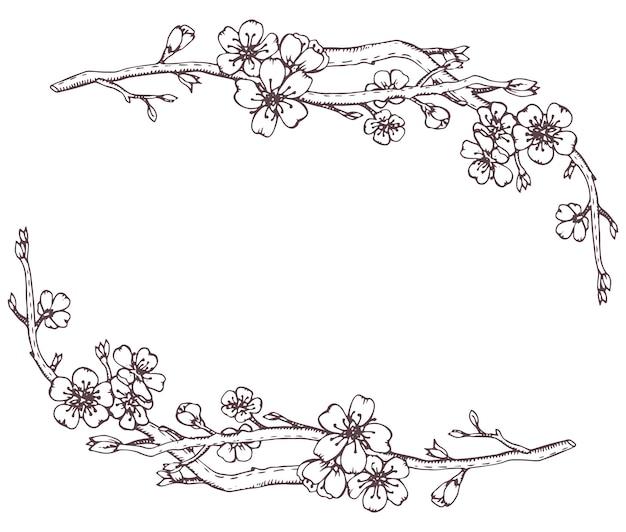 Marco con ramas gráficas dibujadas a mano de una flor de cerezo