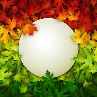 Marco redondeado en blanco sobre fondo de coloridas hojas de otoño realistas