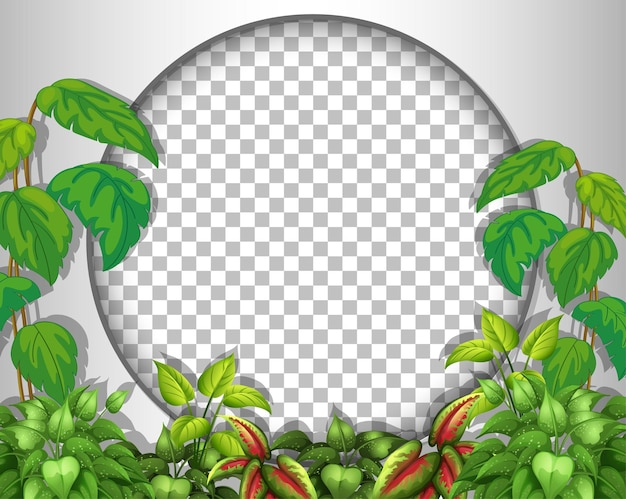 Marco redondo transparente con plantilla de hojas tropicales
