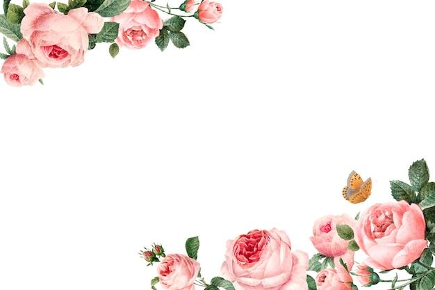 Marco rosa dibujado a mano rosas en vector de fondo blanco