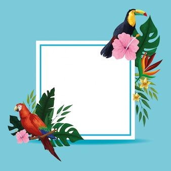 Marco de tarjeta en blanco tropical de verano