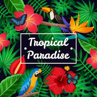 Marco tropical plana