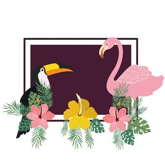 Marco de tucan y flamenco con flores de verano.