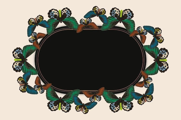 Marco de vector de patrón de mariposa verde vintage, remix de the naturalist & # 39; s miscellany de george shaw