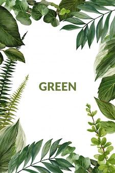 Marco de vegetación y helechos, vector dibujado a mano