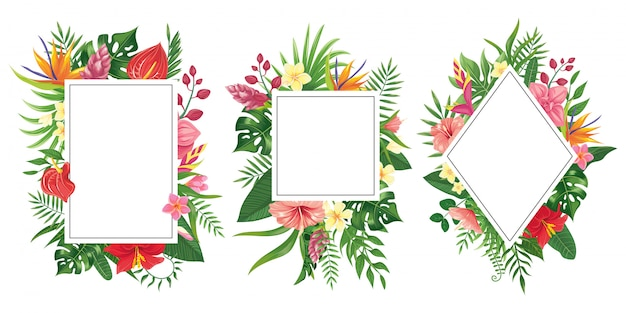 Marcos de flores tropicales. fronteras de los trópicos botánicos, marco de invitación de flores tropicales y fondo de hojas verdes de plantas de verano