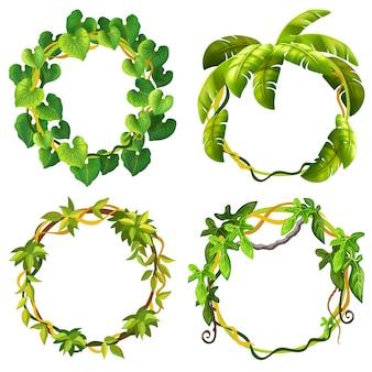 Marcos de ramas y hojas de liana.