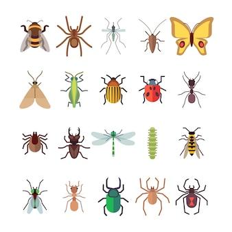 Mariposa, libélula, arañas, hormigas aisladas sobre fondo blanco