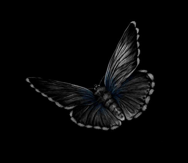Mariposa sobre un fondo negro. ilustración vectorial