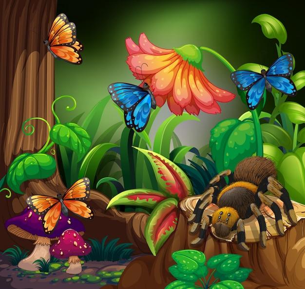 Mariposas y arañas en el bosque