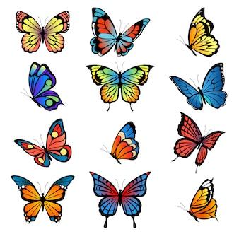 Mariposas de colores. imágenes vectoriales de conjunto de mariposas