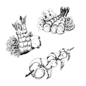 Mariscos. conjunto de dibujo de camarones