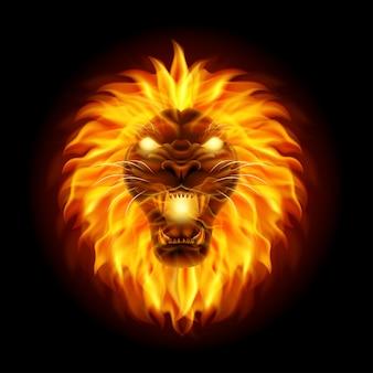 Mascota cabeza de león de fuego