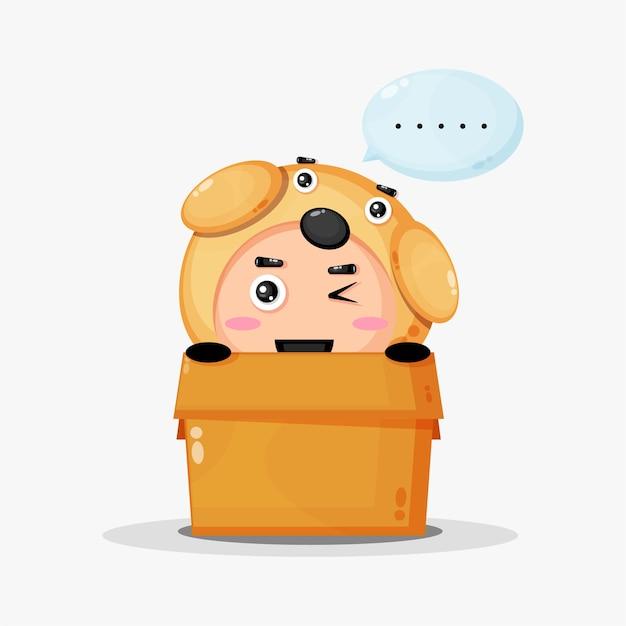 Mascota linda del perro en la caja