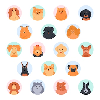 Mascotas caras lindas. linda cabeza de perro caniche, gracioso yorkshire terrier, spitz pomerania y labrador retriever. conjunto de ilustración de hocico de perros de raza pura. avatares de perfil redondo de red social. íconos