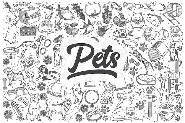Mascotas dibujadas a mano doodle conjunto. rotulación - mascotas