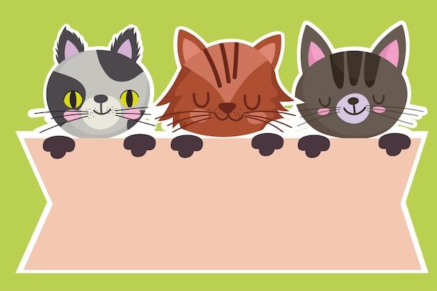 Mascotas dibujos animados gatos felinos animales domésticos diseño de banner ilustración