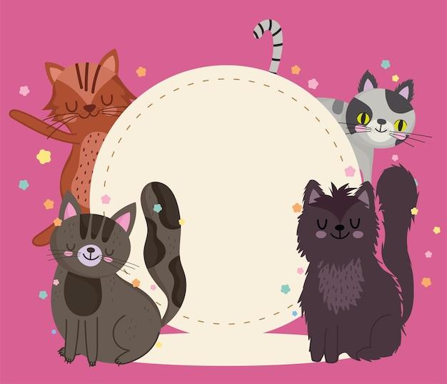 Mascotas gato animales dibujos animados felino con ilustración de plantilla de etiqueta